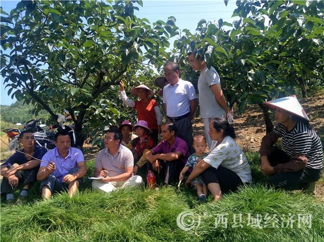 恭城县:乡村振兴实施问计百姓