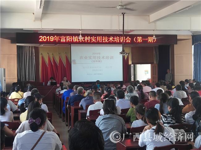 富川县:粤桂扶贫协作助力脱贫攻坚