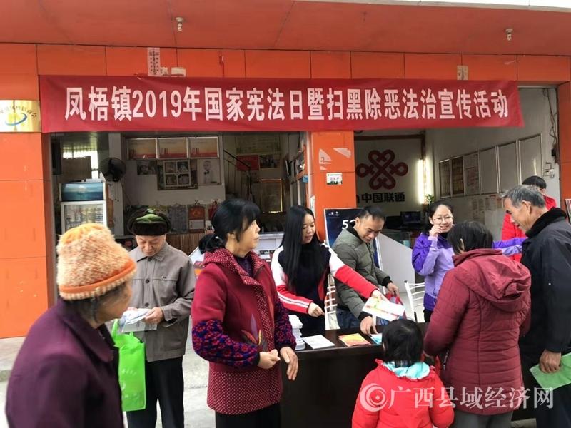 平果县:凤梧镇开展国家宪法宣传日暨扫黑除恶法治宣传活动