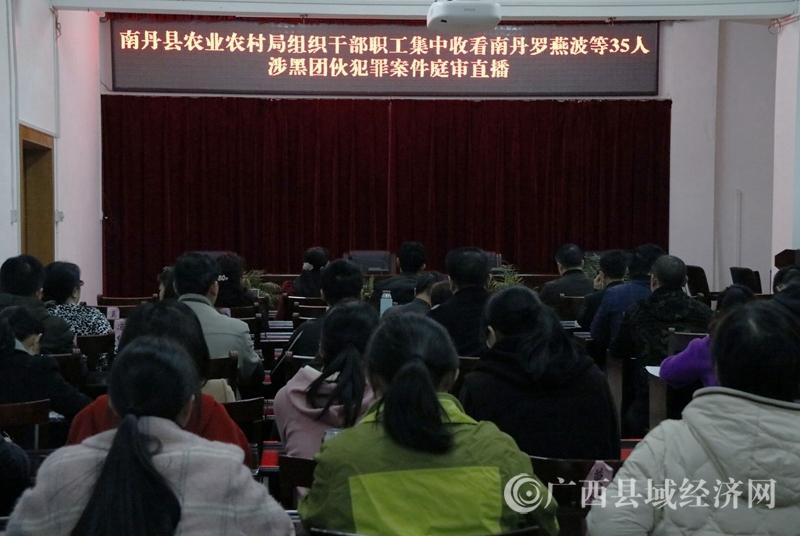 南丹县农业农村局组织干部职工集中收看南丹罗燕波等35人涉黑团伙犯罪案件庭审直播
