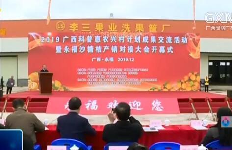 永福县:政府搭台产销对接 永福沙糖桔行销各地