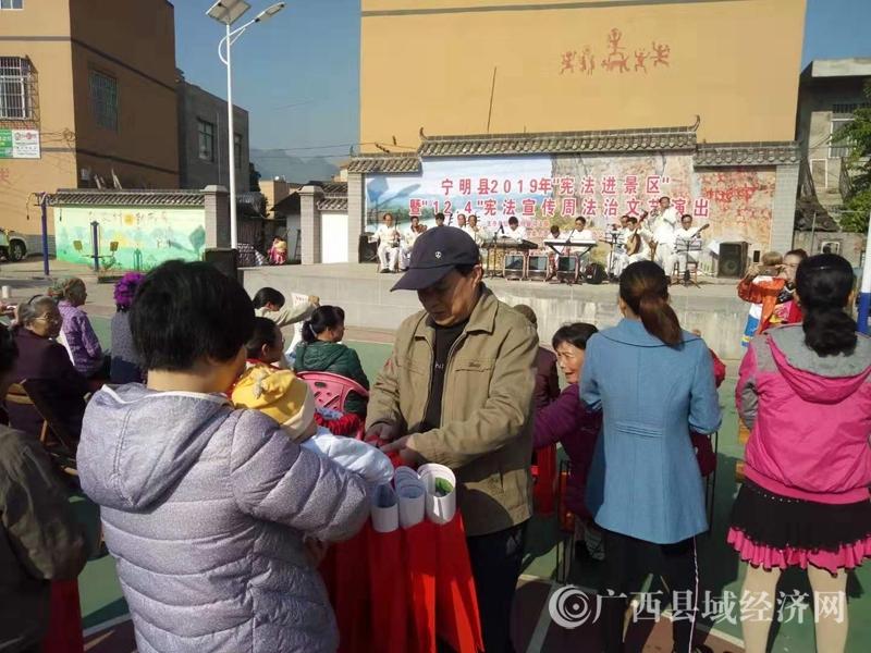 """宁明县开展""""宪法宣传周""""国家宪法日集中宣传咨询一条街活动"""