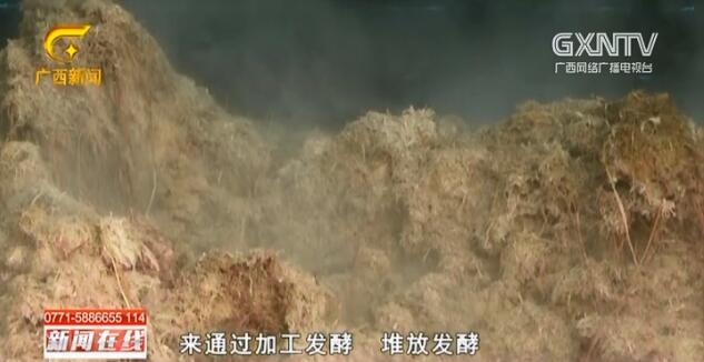 横县:秸秆变废为宝 既环保又增收