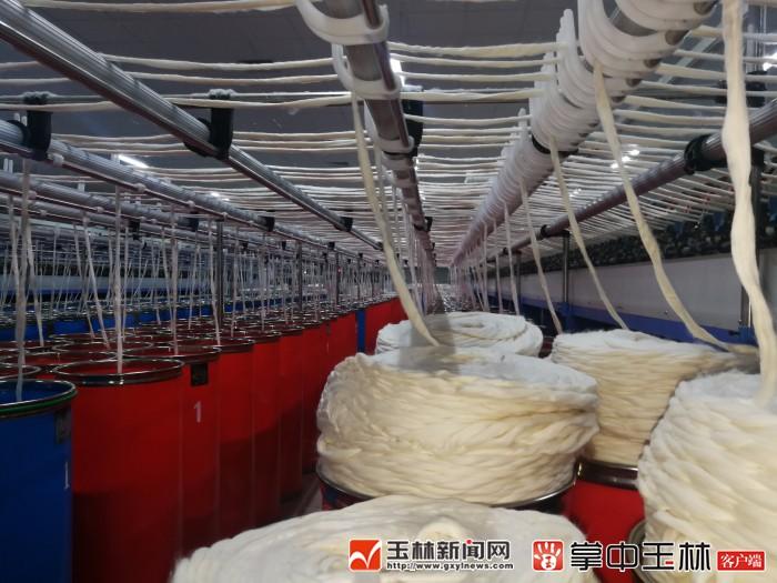 陆川县:打造百亿纺织城 恒和纺织正式投产