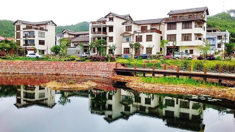 """南宁:全市""""三农""""工作迈向高质量发展"""