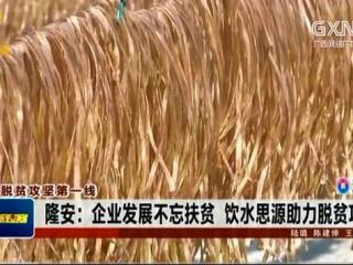 隆安县:企业发展不忘扶贫 饮水思源助力脱贫攻坚