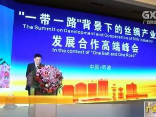 中国丝绸产业发展合作高端峰会在河池开幕