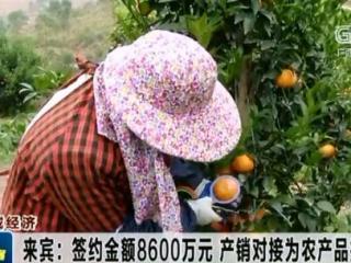 来宾:签约金额8600万元 产销对接为农产品拓宽渠道