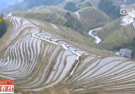 龙胜县:冬游龙脊游客多 民族风情引客来
