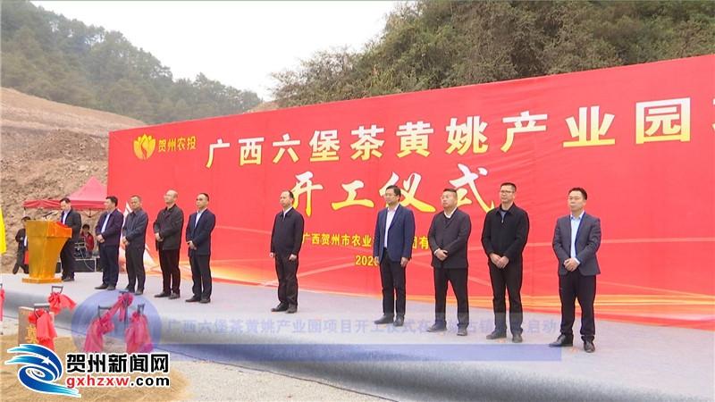 广西六堡茶黄姚产业园项目开工仪式在黄姚古镇正式启动