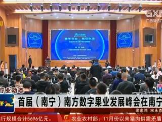 首届(南宁)南方数字果业发展峰会在南宁举办