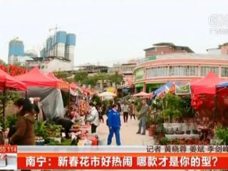 南宁:新春花市好热闹 哪款才是你的型?