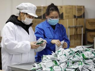 融安县:药企复工加班生产药剂战疫情