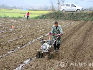 南丹县:抢抓农时积极开展春耕生产