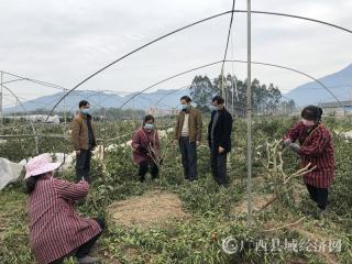 """蒙山县:党旗引领按下战""""疫""""、复工""""加速键"""""""