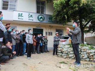 环江县:免费发放油茶苗  助农增收暖人心