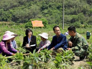 融安县:开展靶向监督护航春耕生产成效好