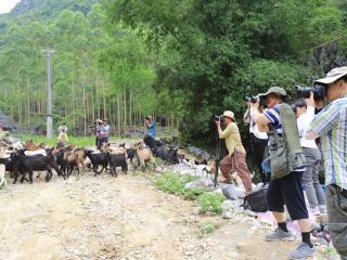 南丹县文联组织作家摄影家到大化采风