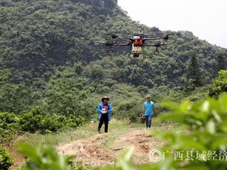 融安县:植保无人机,助力产业发展