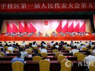 平桂区:区一届人大五次会议胜利闭幕
