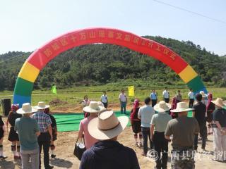 防城区十万山瑶寨文旅项目正式开工