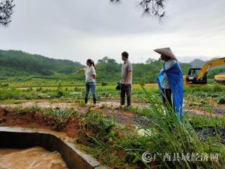 富川县福利镇:抗洪抢险首当其冲 灾后恢复争分夺秒