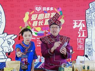 环江县:县长领衔直播带货  助农增收拓销路