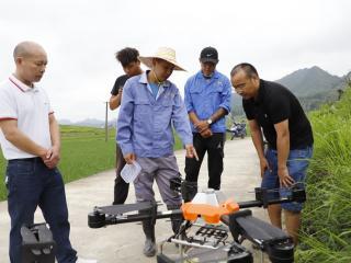 """南丹:首次利用植保无人机投放水稻害虫天敌,""""以虫治虫""""面积10000亩!"""