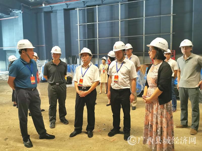 柳州市第十四届人大代表(融安团)开展2020年年中专题调研