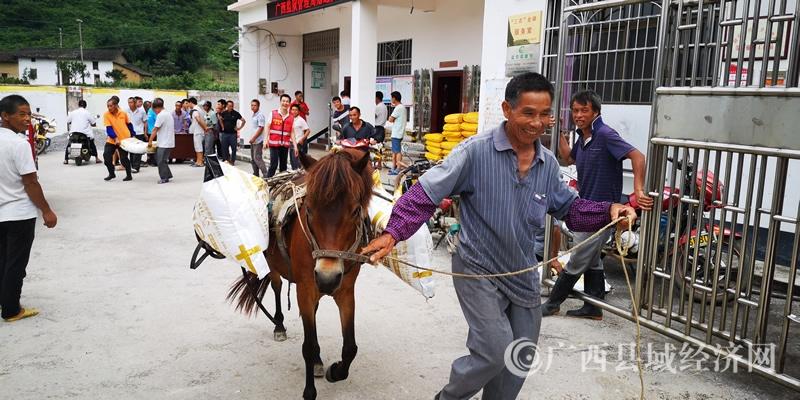 融安县桥板乡:后盾单位帮扶 助力产业发展