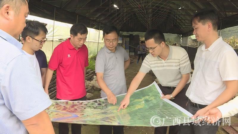 大化县长蓝胜督导大化新引进企业项目建设情况