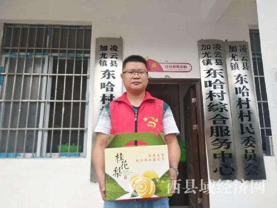 凌云县:第一书记代言桂花梨网上俏卖