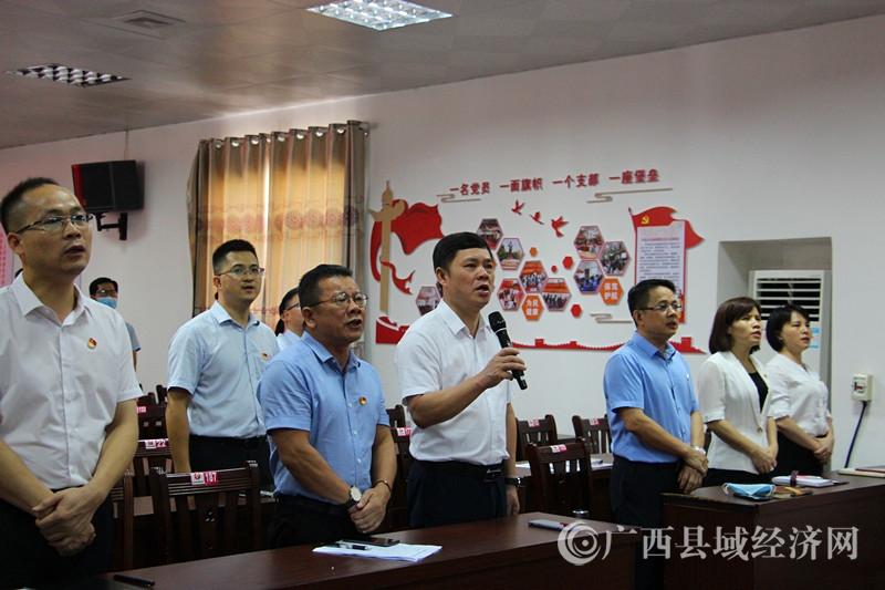 平果市妇幼党总支部开展纪念建党99周年系列活动