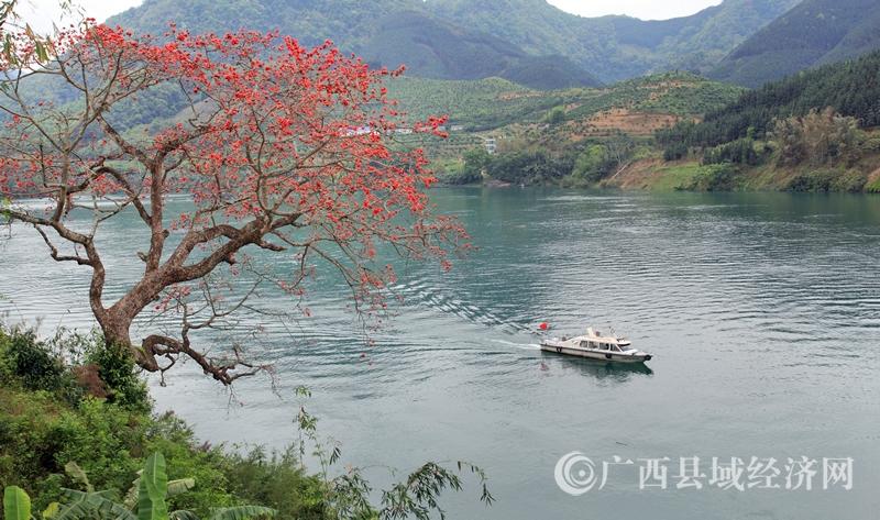 南丹县:跑出美丽乡村加速度    描绘生态宜居新画卷