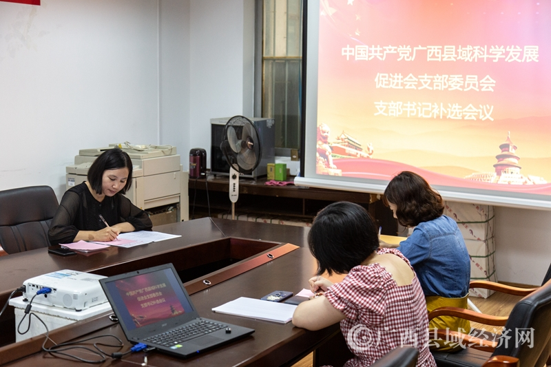 广西县域科学发展促进会党支部召开支部书记补选会议