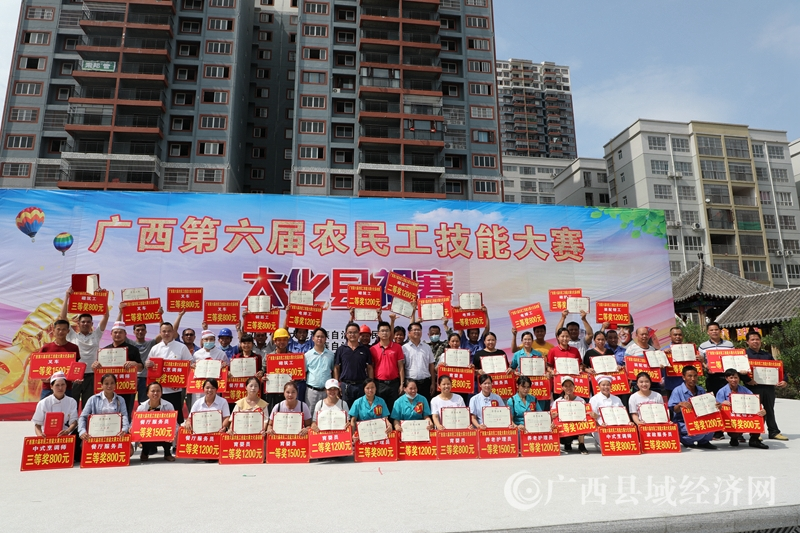 大化县:297名农民工集中达�诵≌蛉�技能亮绝活