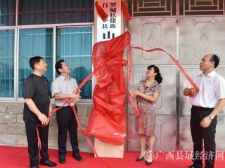 罗城举行山乡教育发展基金会揭牌仪式
