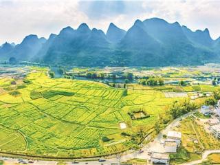 桂林:双引擎驱动 走出乡村振兴新路子
