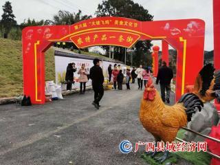 """融安县""""飞鸡""""美食文化节 助推产业发展"""