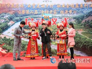 融安县:以花为媒 以村兴旅 绘制美丽乡村画卷