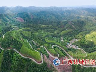 宁明县:完善基础设施建设 为边疆群众谋福祉