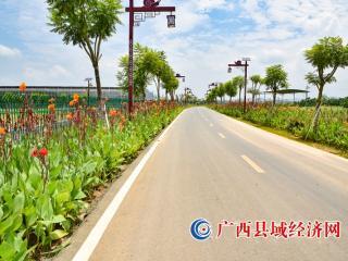 """富川县:""""四好农村路""""助力县域经济发展"""