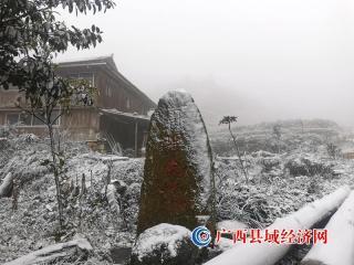 融水今冬第一场雪