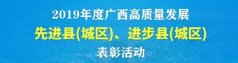 """2019年度""""广西高质量发展先进县(城区)、进步县(城区)""""表彰活动"""