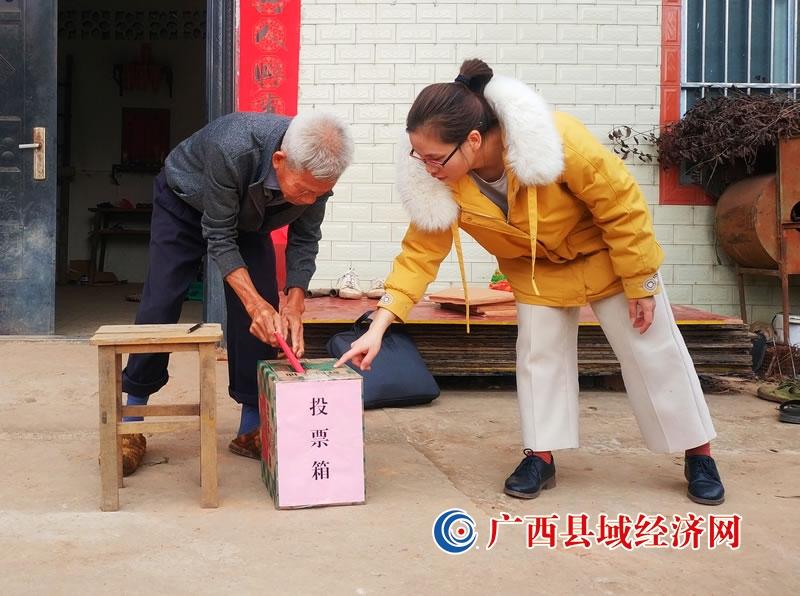 宁明县:广大选民积极参加村(社区)换届选举工作
