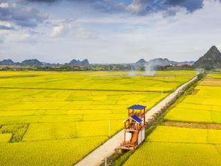 扶绥县:从一穷二白到西部县域经济百强县