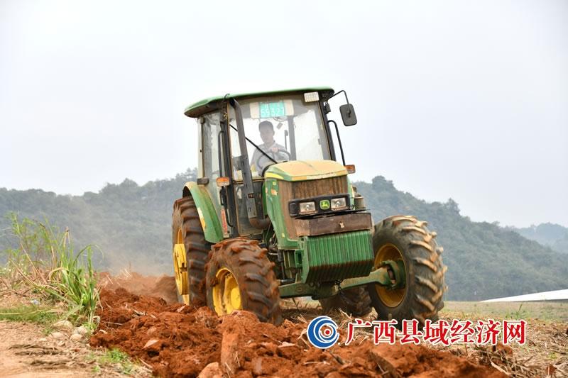 宁明县:抓紧甘蔗春耕生产夯实乡村振兴基础