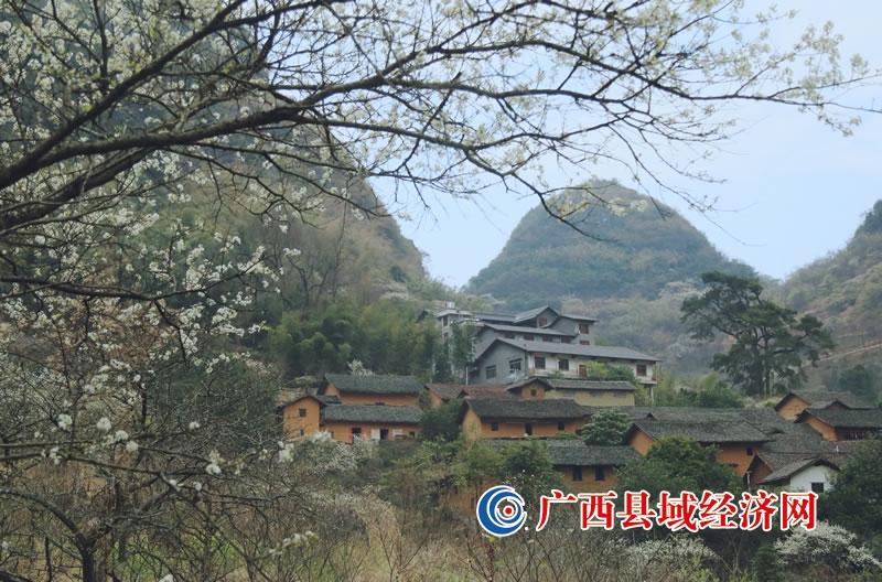 融安县:旅游兴旺人更富