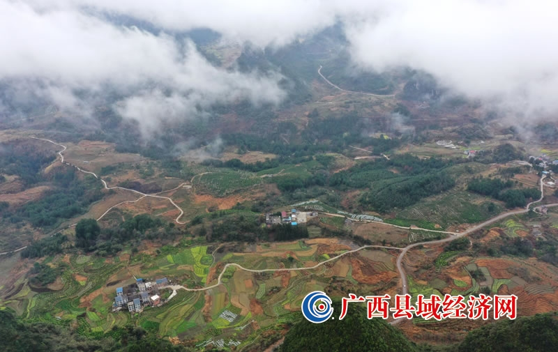 广西融安:桂北山区现平流雾奇观,宛若仙境
