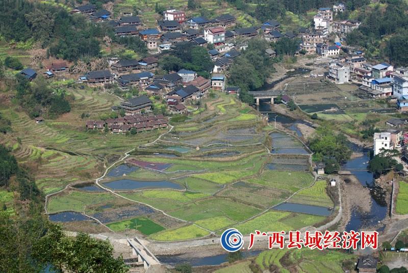融水县:春到苗寨